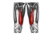 Spriječi ozljedu koljenog zgloba!