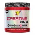 Creatine DNA - 309 g
