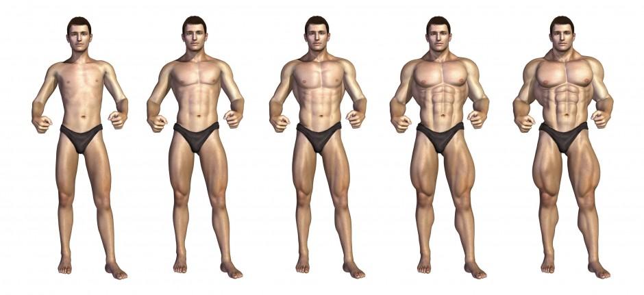 program treninga za transformaciju tijela