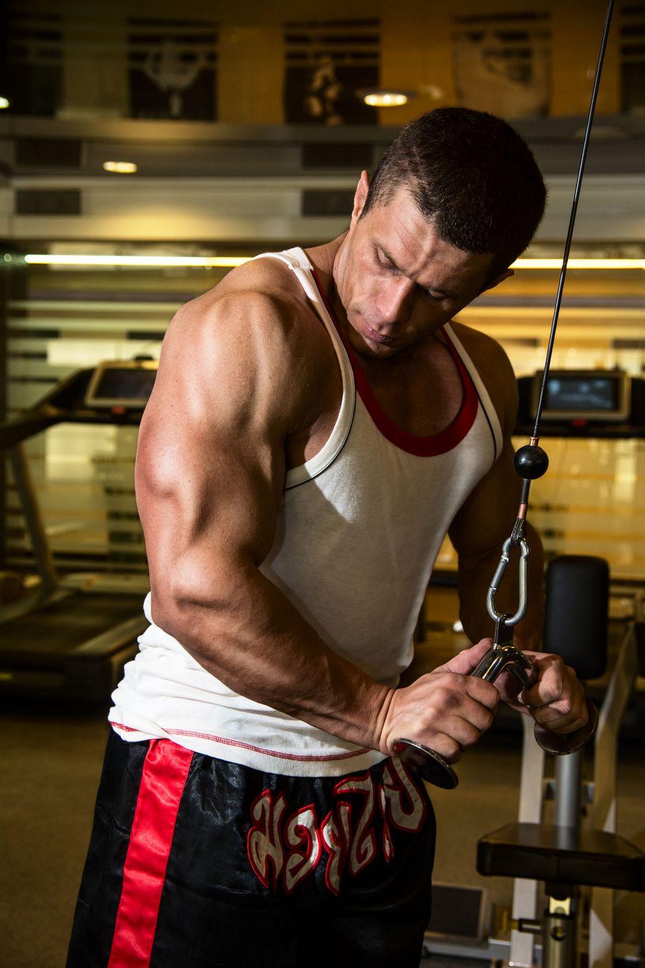 mišićna masa