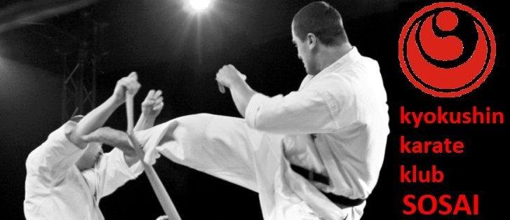 kyokushin karate klub sosai (6)