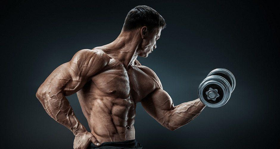 mišići hard
