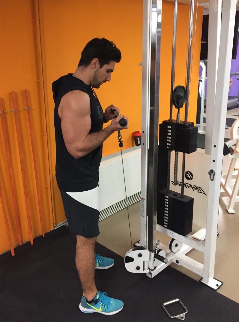 biceps-pregib-sajla
