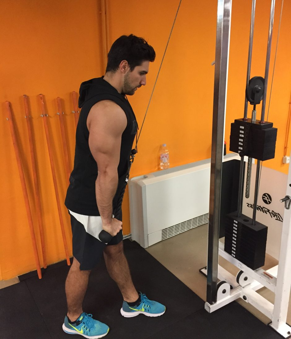 triceps-ekstenzija-sajla